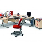 PHOTO 1 - ergonomic desk system from Posture In Style (3)