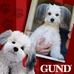 Gund tog dog contest
