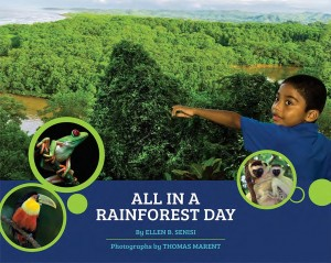 All in a Rainforest Day cover