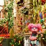 Abby's Garden